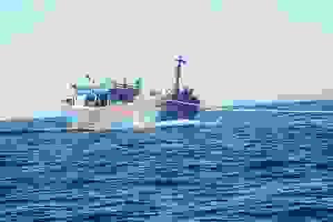 Hai tàu cá của ngư dân Bình Định gặp nạn trên biển