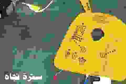 Công bố những hình ảnh đầu tiên về các mảnh vỡ máy bay Ai Cập