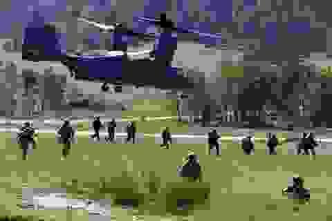 NATO - Mỹ - Ukraine tập trận chung lớn chưa từng có