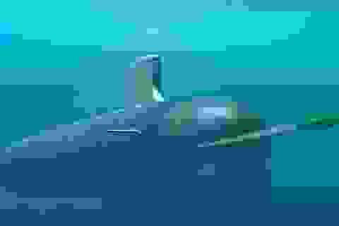 Mỹ sẽ bán ngư lôi hạng nặng cho Đài Loan