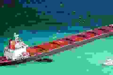 Australia phạt tàu Trung Quốc gần 40 triệu USD vì phá hoại rạn san hô