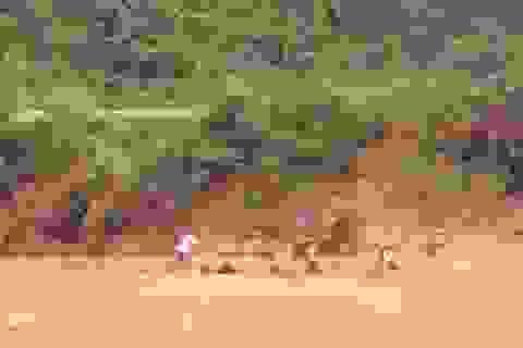 Tìm thấy thi thể học sinh lớp 5 bị nước cuốn trên đường đi học