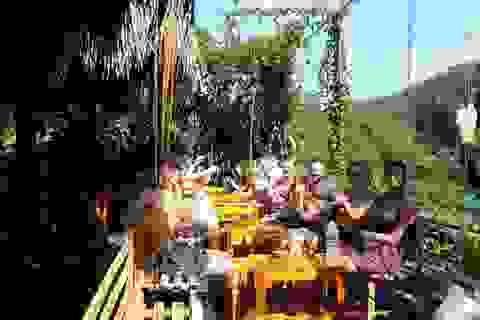 """Quảng Bình: Đưa dịch vụ """"Cá massage chân"""" vào phục vụ du khách"""