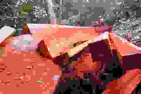 Kiểm điểm, xử lý kỷ luật các tập thể, cá nhân để xảy ra phá rừng
