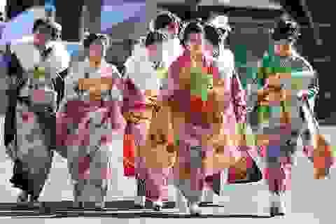 Ngắm thiếu nữ Nhật rạng rỡ trong ngày lễ trưởng thành