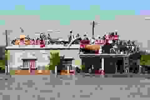 Việt Nam hỗ trợ nạn nhân lũ lụt tại Mozambique