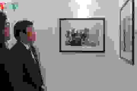 """Chủ tịch nước thăm triển lãm """"Việt Nam – Cuộc chiến tranh qua ảnh"""""""