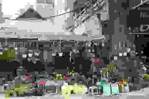 Chợ hoa xưa và nay của người Kẻ Bưởi