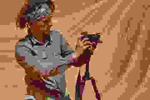 Nhiếp ảnh gia người Ý Luca Bracali khám phá vẻ đẹp Việt Nam