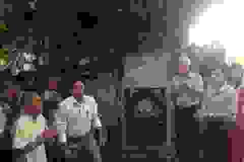 """""""Thần mộc"""" 900 năm tuổi ở Nam Định trở thành Cây di tích"""