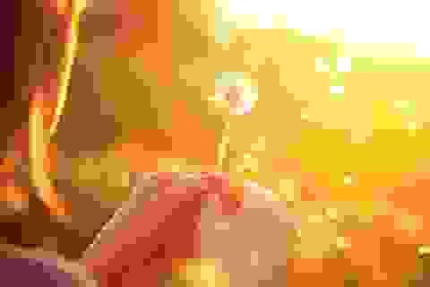 Bạn có tin vào lòng tốt và sự trung thực của người xa lạ?