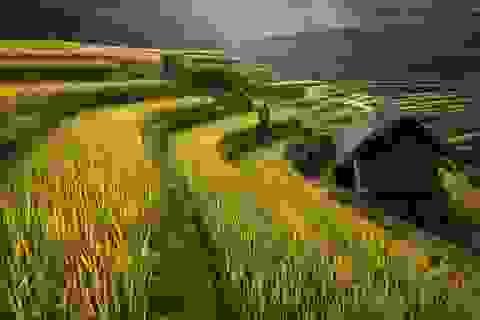 Hình ảnh Việt Nam tươi đẹp tại giải ảnh quốc tế