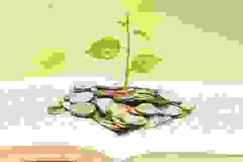 Nếu muốn giàu có, hãy chăm đọc sách