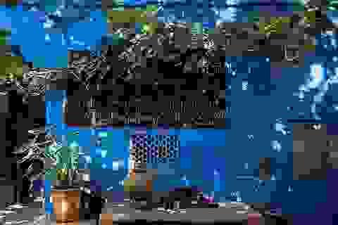 Vẻ đẹp của thành phố màu xanh nổi tiếng thế giới