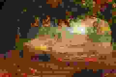 """Bộ ảnh đẹp ngoạn mục chụp ở nơi """"trái tim của mùa thu"""""""