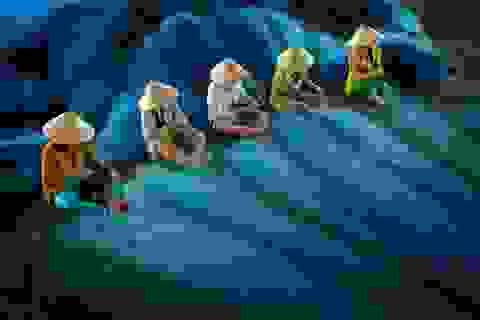 Tác phẩm của nhiếp ảnh gia Việt Nam lọt top giải ảnh quốc tế