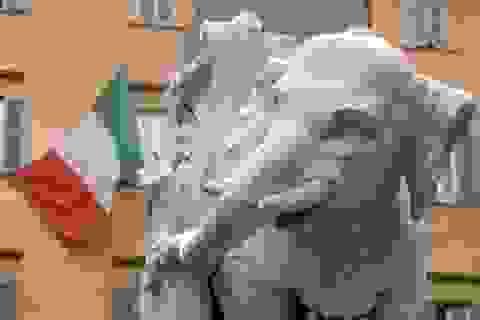Thành Rome tức giận vì thêm một di sản nghệ thuật bị phá hoại