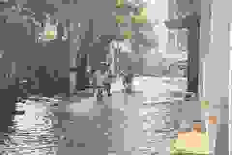 """Hà Nội: Hàng trăm hộ dân sống cảnh """"chìm trong nước"""" suốt 3 ngày"""