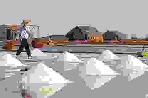 Kiểm tra gấp chỉ tiêu kim loại nặng trong muối biển