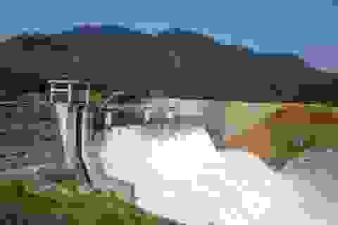 Đề nghị dừng chuyển đổi rừng để xây dựng thủy điện Đrăng Phốk