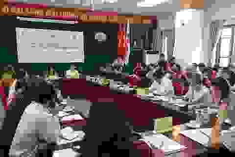 Trung ương Hội chữ thập đỏ Việt Nam diễn tập cơ chế ứng phó với thảm họa