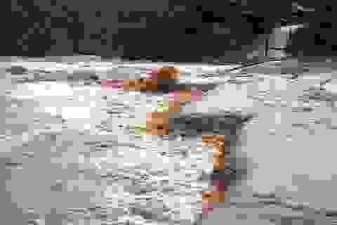 Cảnh báo lũ quét tại các tỉnh Hà Tĩnh - Bình Định, Tây Nguyên