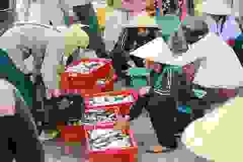 """Bộ Nông nghiệp: Không có hải sản """"vùng cấm"""" bị bán ra thị trường"""