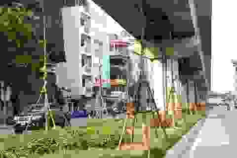 Chuyên gia nói gì về việc trồng cây dưới gầm đường sắt trên cao?