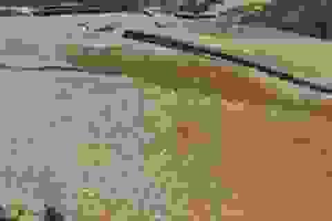 Bé trai bị cuốn trôi, nghi do thủy điện bất ngờ xả nước