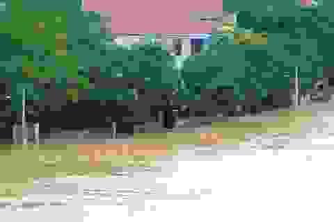 Chủ động đối phó với mưa lũ ở Trung Bộ