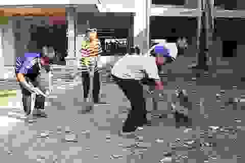 Những trường học chục tỷ bỏ hoang giữa thủ đô