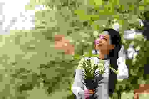 Hoa loa kèn khoe sắc trong tiết trời tháng tư