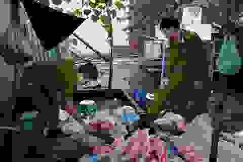 Đà Nẵng: Phát hiện cơ sở chế biến nội tạng bẩn