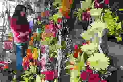 Thị trường 20/11 tại Đà Nẵng: Hoa tươi tăng giá nhẹ, sức mua yếu