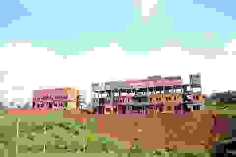 """Đắk Nông: Dân điêu đứng vì quá nhiều dự án quy hoạch """"treo"""""""