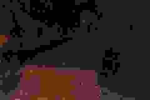 Chạy xe máy qua cầu gỗ bị ngã xuống suối tử vong