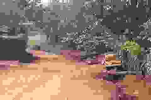 Nữ sinh lớp 8 tử vong bất thường trên đường đi học về