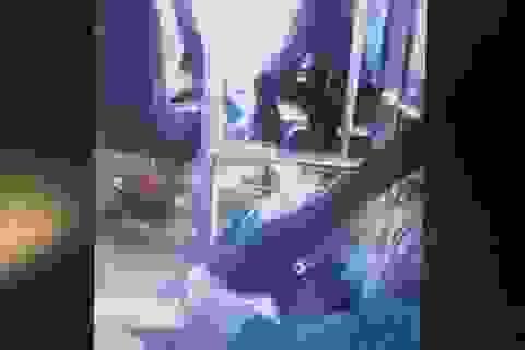 Tạm đình chỉ công tác tài xế vừa lái xe buýt vừa đánh bài