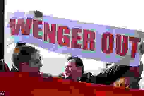 Làn sóng phản đối chưa từng thấy đòi sa thải Wenger