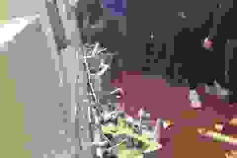 Thất vọng, CĐV Man City phá nát nhà vệ sinh ở Old Trafford