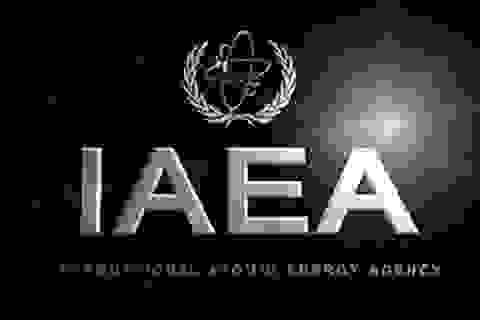 """IAEA lập """"lực lượng đặc nhiệm"""" về Iran"""