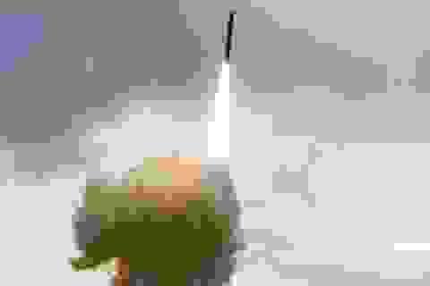 Mỹ quyết tâm triển khai tên lửa tại Alaska