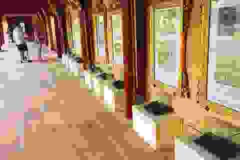 Xem bốn Di sản Tư liệu Thế giới ở Việt Nam