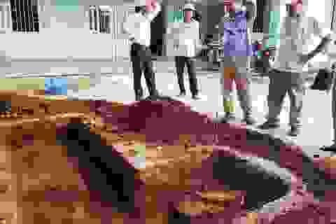 Khảo cổ tìm lăng mộ Vua Quang Trung: Phát hiện dấu vết nghi móng tường thành xưa