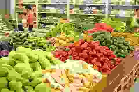 Xuất khẩu giảm, nhập khẩu tăng: Ngành nông nghiệp đang khốn khó