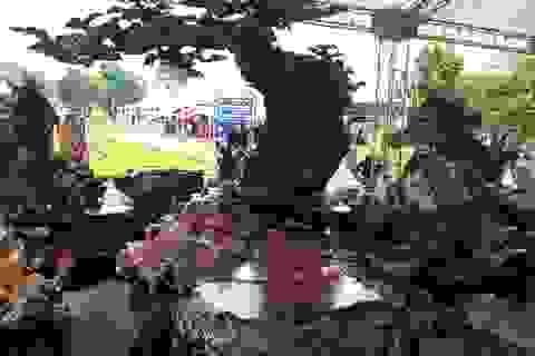 Cận cảnh bộ bàn ghế gỗ nu được rao bán hơn 1 tỷ đồng tại Hà Nội