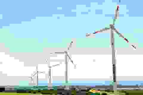 Giá rẻ, thiếu cạnh tranh, điện tái tạo Việt Nam khó bứt phá