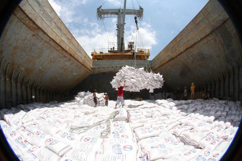 Xuất khẩu gạo giảm kỷ lục trong năm biến động của ngành nông nghiệp