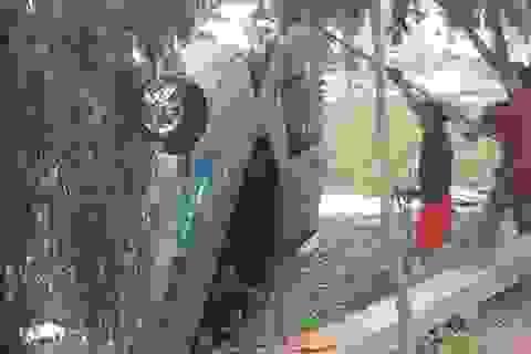 Phó Thủ tướng chỉ đạo làm rõ vụ taxi lao xuống hồ làm 4 người chết