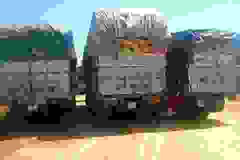 Trung Quốc phạt tới 100 triệu đồng xe quá tải Việt Nam qua cửa khẩu
